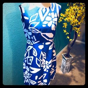 Diane Von Furstenberg Carrie Dress 8